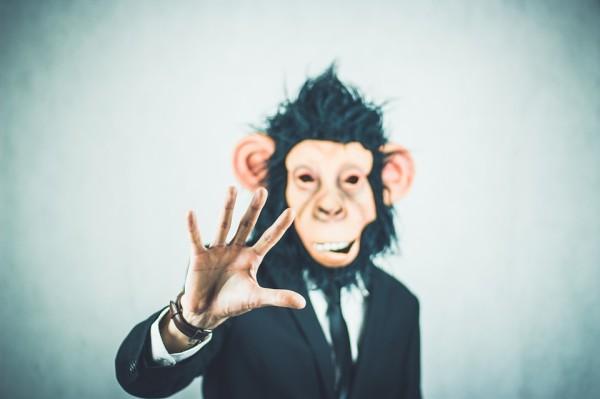 сотрудник - обезьяна